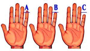 Хиромантия - длина пальцев