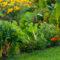 Лунный календарь садовода и огородника на апрель 2021